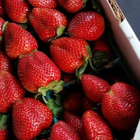 Strawberries by Carmen Hahn - Food & Drink Fruits & Vegetables (  )