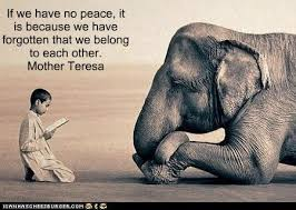 Mother Teresa Quote right one.jpg
