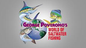 World of Saltwater Fishing thumbnail