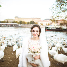 Свадебный фотограф Анна Шизгара (1ShizGara). Фотография от 19.06.2015