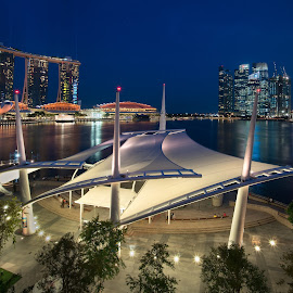 Night scene of Singapore by Joyce Chang - City,  Street & Park  Night ( shenton way, marina bay sands, blue hours, open theatre, esplanade, singapore )