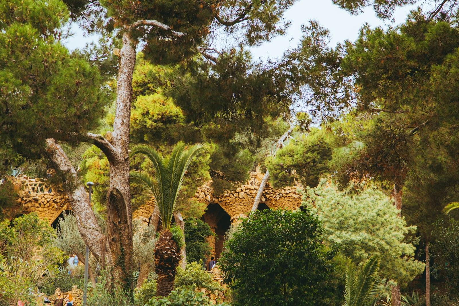 A view through the foliage of Park Guell's public area.