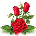 Amazing Flowers Images Gif Rose Stickers Wallpaper APK