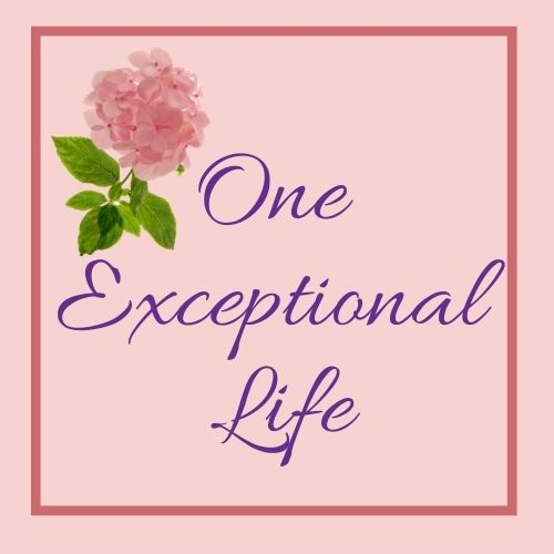 one exceptional life logo, pink hydrangea