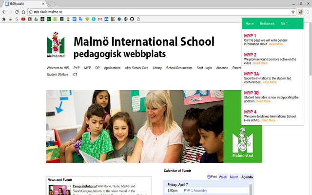 Malmo International School