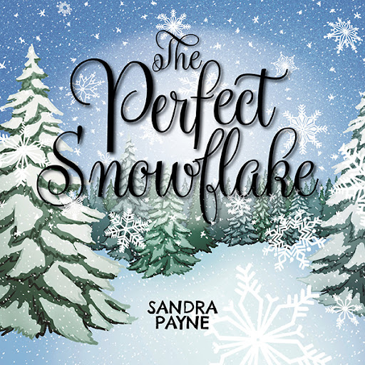 The Perfect Snowflake cover