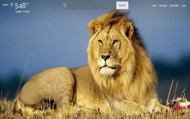 Lion Wallpapers Theme  GreaTab
