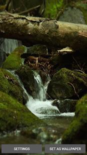 Zvuky Přírody Živé Tapety - náhled