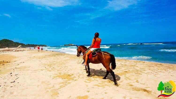 Paquetes Turísticos Bahía Solano Plan Ballenas