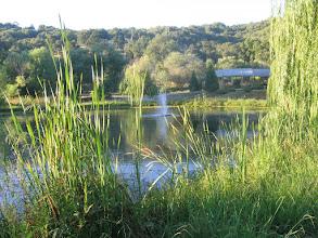 Photo: Yoga Farm, CA - pond in summer