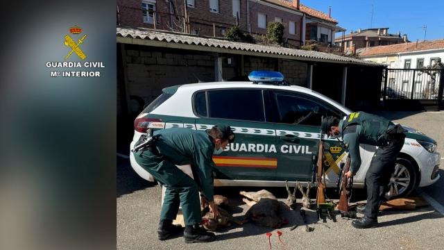 La Guardia Civil vela por el bienestar de los animales.