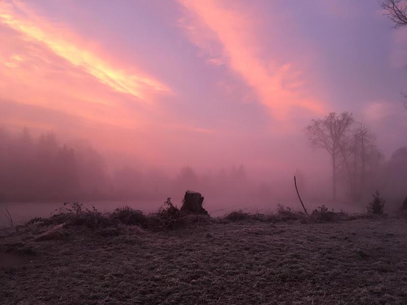Cinquanta sfumature di nebbia mattutina di Lipalipa