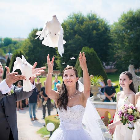 Svatební fotograf Martin Šteiner (steiner). Fotografie z 19.12.2017