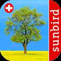Baum Id Schweiz - Bäume der Schweiz icon
