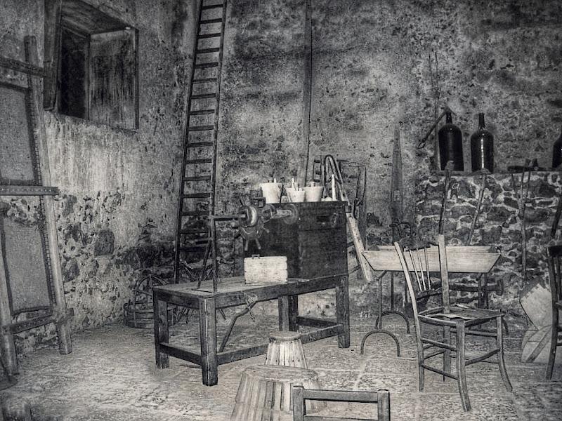 Rusticana di Massimo_Vitellino
