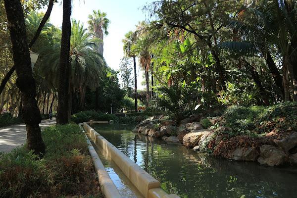 Scorci tropicali di Malaga di cristiansantoro95