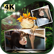 Nature Photo Frame 4K