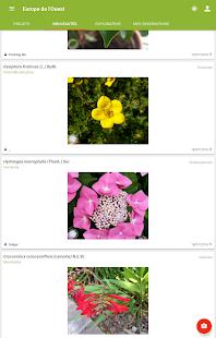 plantnet identification plante applications android sur google play. Black Bedroom Furniture Sets. Home Design Ideas