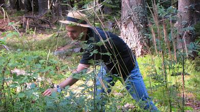 Photo: fr. Justin využili nejedno z četných nalezišť borůvek  k degustaci.