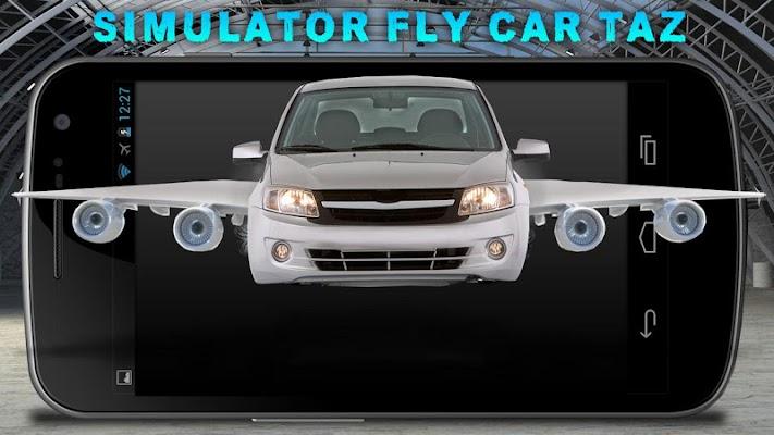 Simulator Fly Car Taz - screenshot