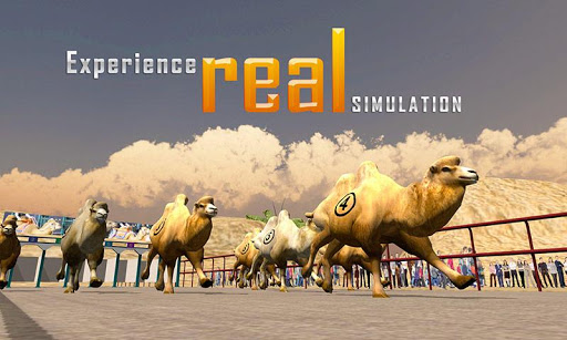 Camel Racing Simulator 3D