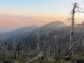 Photo: View south on PCT toward Sadie Hawkins (left) and Middle Hawkins