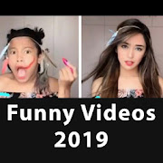 Funny Videos of TikTok 2019 Musically Status