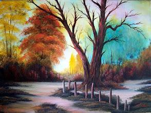Photo: 2507 Autumn Palette 18 x 24 $299.00
