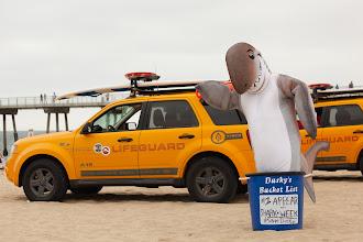Photo: Dusky posing with lifeguards