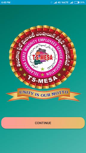 TS-MESA screenshots 1