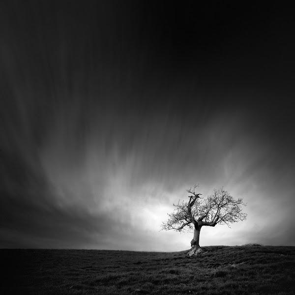 Photo: One, two, tree: Nº1 // B+W