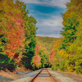 Fall foliage around the tracks by Debbie Quick - Transportation Railway Tracks ( mountains, debbie quick, color, seasonal, train tracks, scenic, changing, debs creative images, trees, beautiful, fall, leaves, season, railroad tracks, dover plains, nature, new york, tracks, foliage, colour, autumn, hudson valley, touristy, landscape, colorful,  )