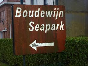 Photo: Pour la fermeture du delphinarium Boudewijn Seapark.