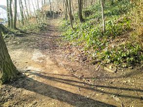 Photo: 15:28 Uhr: Mauerrest im Verlauf des Waldweges östlich des Bunkereingangs am Sunderweg.