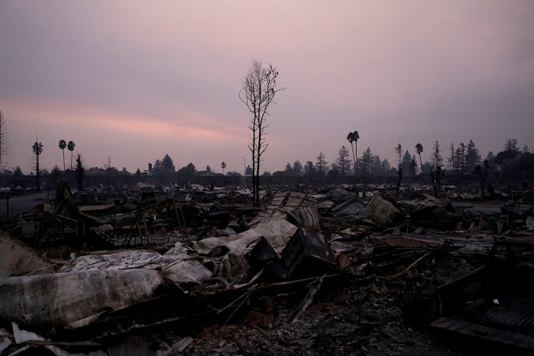 A burnt tree stands amidst the destroyed Journey's End Mobile Home Park during the Tubbs Fire in Santa Rosa, California, U.S., October 9, 2017.