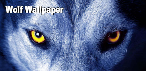 Wolf wallpaper apps on google play voltagebd Gallery