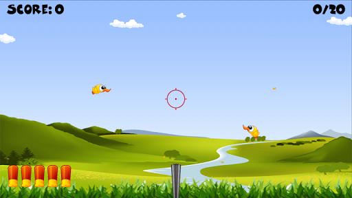 Ducks Shooting