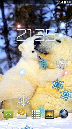 Polar Bears HD Live Wallpaper