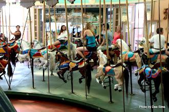Photo: (Year 3) Day 25 - The Wonderful Carousel #9