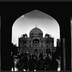 Majestic Mystique  by Debasis Banerjee - Buildings & Architecture Public & Historical ( heritage buildings, historical monuments, tombs, mughal architecture, architecture, hyumaun's tomb, delhi )