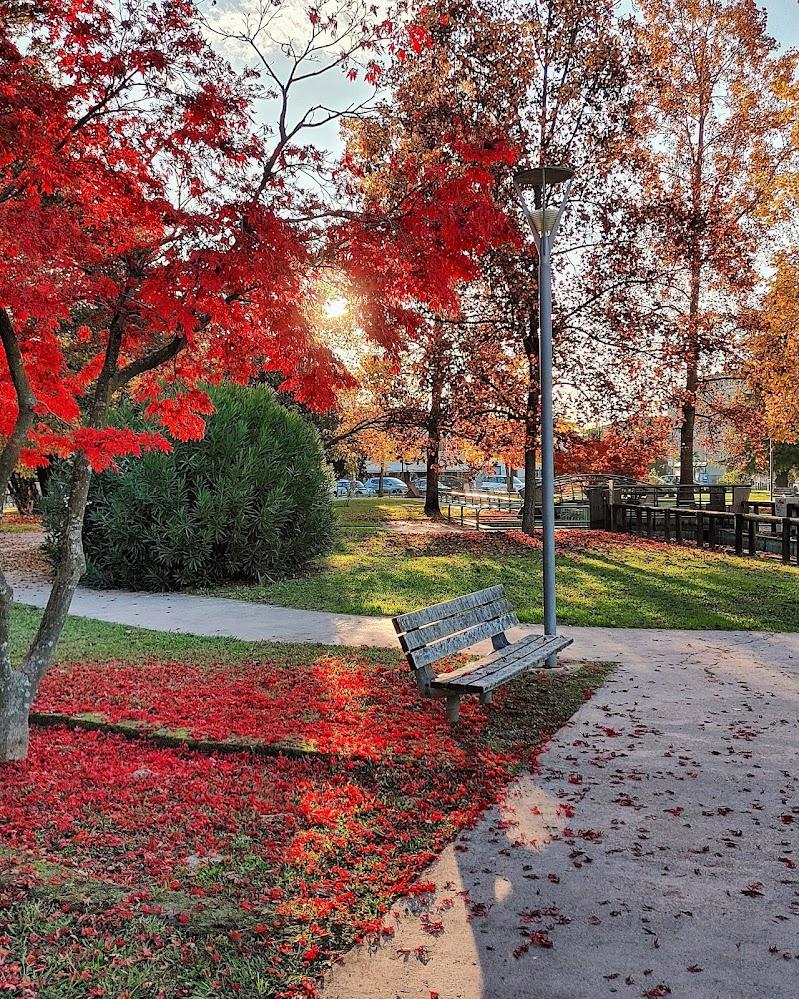I colori d' autunno di ChiaraManente