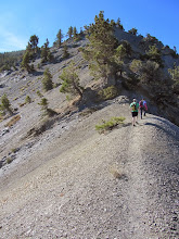 Photo: Looking south on North Backbone Trail