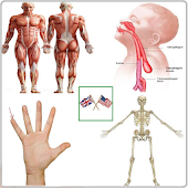 Body Parts Name and Pictures