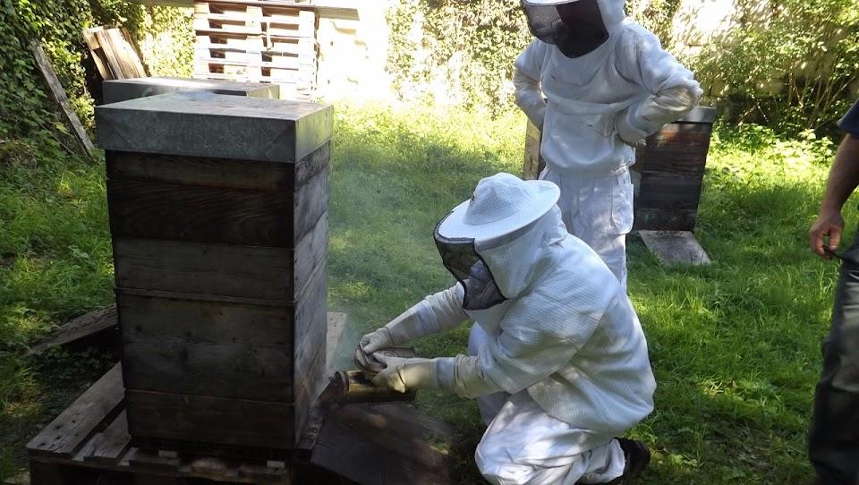 apiculture des ESAT de L'Arche avec des personnes handicapées mentales