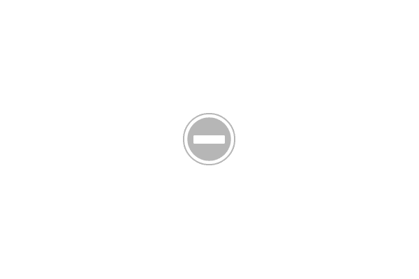 endless struggle salt lake city utah local punk band