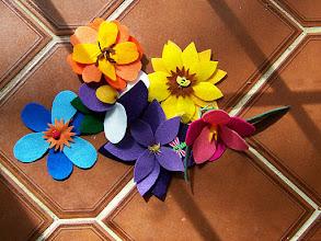 Photo: Kathy Moulton's flowers