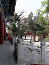 Photo: 14 mei 2012. Bezoek aan de Confuciustempel (Guozijian Street).