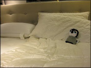 Photo: Carlisle relaxes on a sample bed at IKEA. The store is huge!