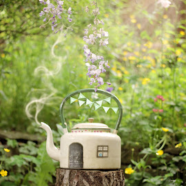 Teapot house by Heather Catherine - Digital Art Things ( fairy )