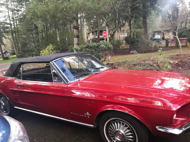 Ford Mustang Hire Port Orchard